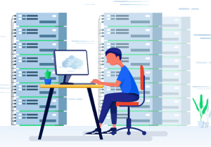 Web Hosting and Management